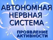 Презентация AVTONOMNAYa_NERVNAYa_SISTEMA