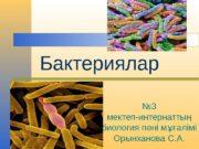 Бактериялар № 3 мектеп-интернатты ң биология п ні