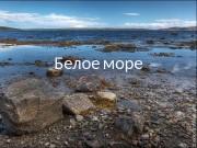 Белое  море  Бассейн океана  •