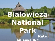 Bia l owie z a National Park