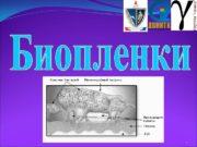 БИОПЛЕНКИ  ГОУ ВПО СПб. ГМА им. И.
