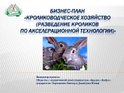 Презентация biznes-plan-Rabbit