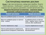 Презентация Ботаніка Систематика Нижчих рослин. Леція 1 Бенгус New