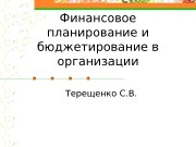 Финансовое планирование и бюджетирование в организации Терещенко С.