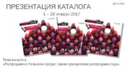 ПРЕЗЕНТАЦИЯ КАТАЛОГА 1 – 28 января 2017 Тема