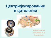 Центрифугирование в цитологии Котюкова Е. М. Голубкова А.