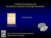 Cerebral asymmetry and the specific functions of the