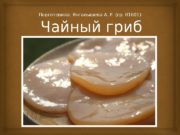 Чайный гриб. Подготовила: Янгалышева А. Р. (гр. 01601)