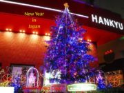 New Year in Japan By Kurilenko Daniil