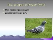 Презентация Что я знаю о Power Point