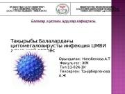 Презентация ЦМВИ жне жай герпес Ниязбекова А