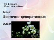 09 февраля Классная работа Тема:  Цветочно-декоративные растения.