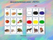 Дидактическая игра «ЛОТО» Овощи Цвет Животные  Одежда
