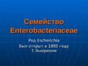 Семейство Enterobacteriaceae Род Escherichia Был открыт в 1885