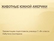 Презентация ef276e886c2ed3be662f7eb5ebd0ed80