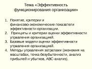 Презентация Эффективность функционирования организации Кондратенко С.А