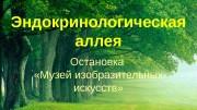 Презентация Эндокринологическая аллея. Остановка Музей изобразительных искусств