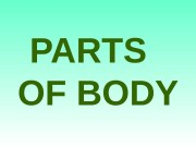 PARTS OF  BODY  body head