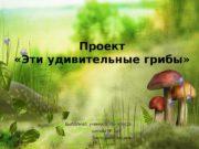 Проект  «Эти удивительные грибы»  Выполнил: ученик