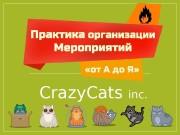 Crazy. Cats inc.  Николай Корсаков