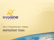 Презентация evolline marketing