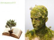 Эволюция органического мира. Готовимся к ЕГЭ  Развитие