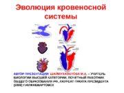 Эволюция кровеносной системы АВТОР ПРЕЗЕНТАЦИИ:  ШАЙМУХАМЕТОВА М.