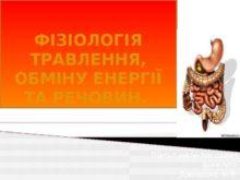 fіzіologіya_travlennya_0.jpg