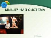 Презентация farm I N 2 lek Myshechnaya