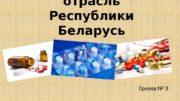 Фармацевтическая отрасль Республики Беларусь Группа № 3