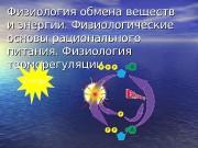 Презентация физиология обмена веществ и энергии презентация Microsoft Power Point