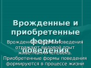 Презентация formy deyatelnosti 0