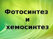Презентация Фотосинтез и Хемосинтез