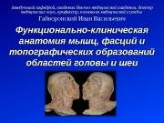 Презентация Гайворонский Лекция 10 Мышцы головы и шеи