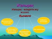 Презентация Жапыра — сімдікті су мшесі
