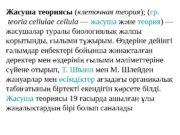 Жасуша теориясы ( клеточная теория ); ( гр.