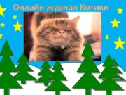 Онлайн журнал Котики  Факты о котах 1.