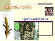Царство Грибы.    Грибы-паразиты.  Грибы-паразиты.