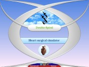 Жуковский Москва. Heart surgical simulator  Gerald D.