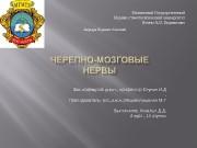 Презентация ХовалыгД.Д 4к.10группы