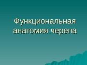 Презентация И.Н. Череп