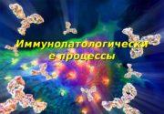 Иммунопатологически е процессы   Иммунитет ( от