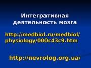 Презентация Инт деят мозга дошк