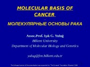 1 MOLECULAR BASIS OF CANCER