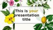 This is your presentation title  Instructions for