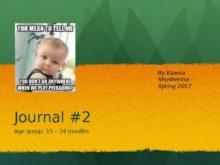 journal_2_toddlers_1_0.jpg