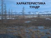 ХАРАКТЕРИСТИКА     ТУНДР  Географическое