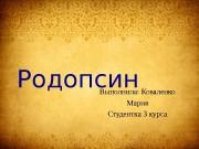 Презентация Коваленко М. — Родопсин