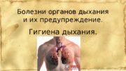Болезни органов дыхания и их предупреждение. Гигиена дыхания.