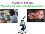 Puzzle of the day What is the link